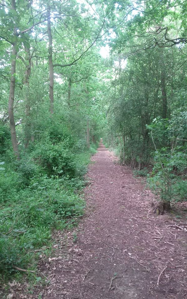 Path near the Monastery of St. John the Baptist in Essex England